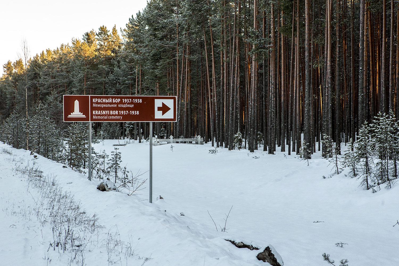 Лесной порнтал республики карелия