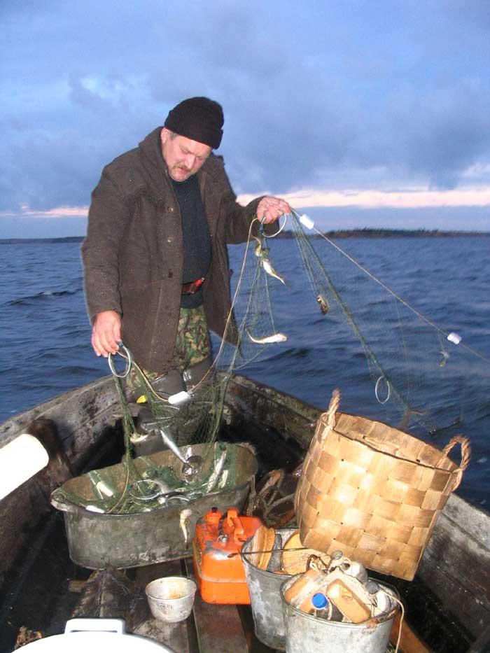 рыбалка в карелии на белом море видео